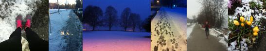 winterunning14
